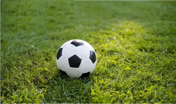 Hướng dẫn chơi cá cược bóng đá trực tuyến an toàn nhất